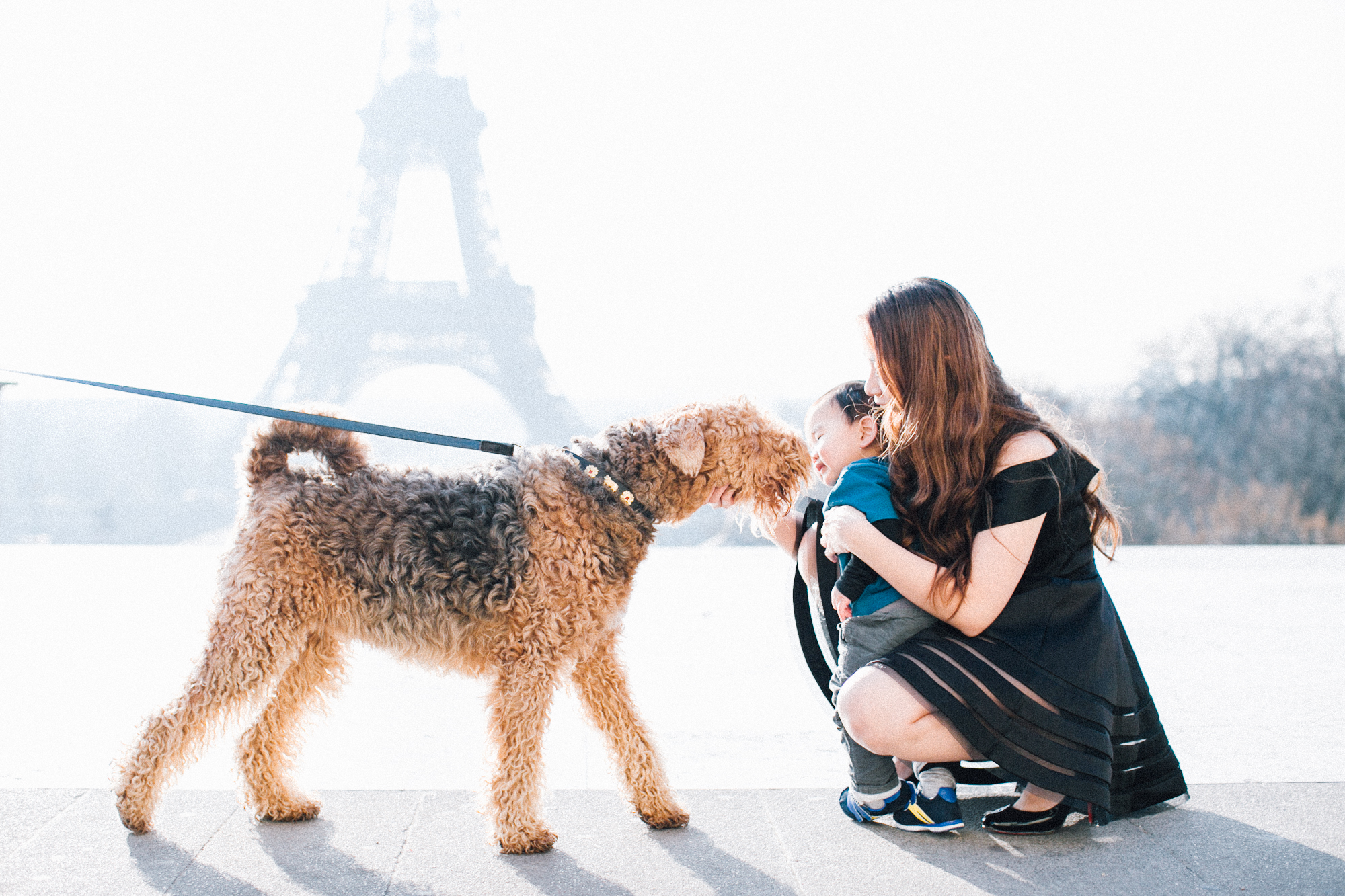 Sebastians-First-Sight-of-Eiffel-5